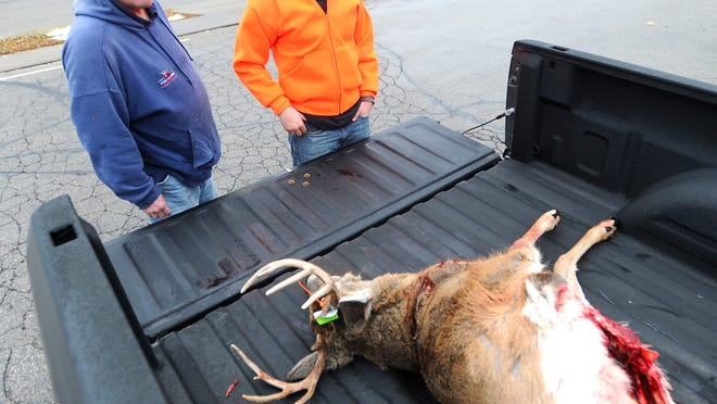 Tim Gillett and Kyle Gillett look over a 10-point buck that Kyle shot about 10 minutes after the start of the gun deer season on Saturday. They said they were hunting on private land near Pickett.