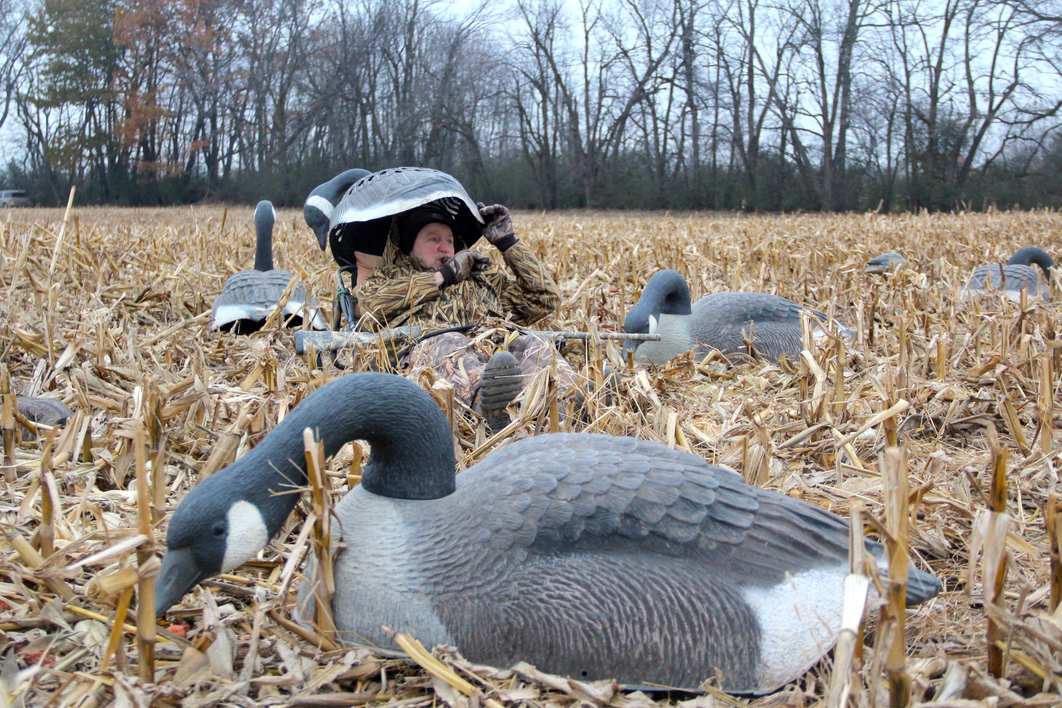 Perfect Board Approves Uniform Opening Date For Duck Hunters, Increase In Goose Bag  Limit