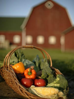The Michigan Good Food Fund  provides loans and grants to businesses working to get fresh fruits, vegetables and meats to communities in need throughout the state.