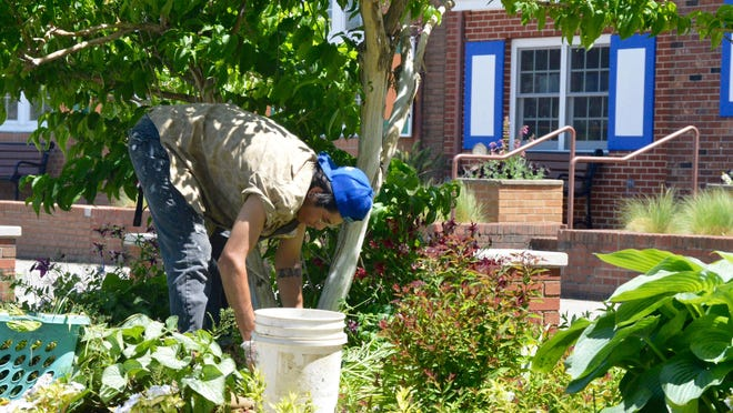 A city worker tends to a garden at Windmill Island Gardens in anticipation of the park's opening Monday, June 15.