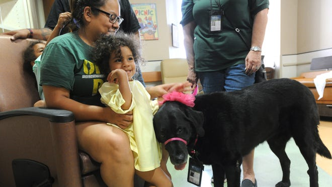 Amiyah Mumford, 2, and her mother Andrea pet a therapy dog at Hendrick Medical Center Tuesday, March 21, 2017.