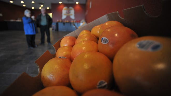 Boxes of grapefruit are visible as a shopper selects fruit during the Lions Club fruit sale.