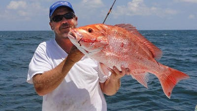 Mississippi fishermen like Capt. Robert Earl McDaniel of D'Iberville will enjoy a 28-day red snapper season in 2013. The nine miles of Mississippi waters will be open for red snapper fishing on July 4-6, 11-13, 18-20 and 25-27. The bag limit will be two red snapper per person, with a minimum size of 16 inches.