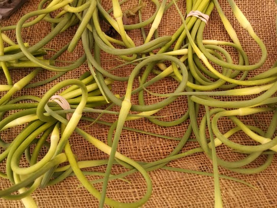 Garlilc scapes from Paper Crane Farm. These spring
