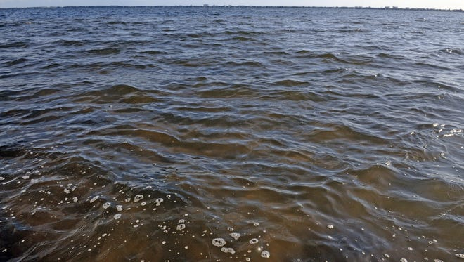 Regional water managers are investigating a possible algae bloom in the Indian River Lagoon just south of the State Road 520 Causeway, near Cocoa
