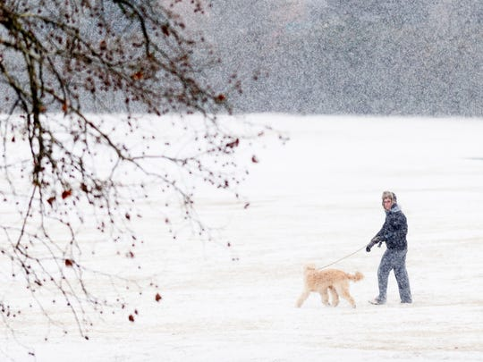 A person and their dog walk through the Wold's Fair dog park during an afternoon snowfall in Knoxville, Tennessee on Tuesday, January 16, 2018.