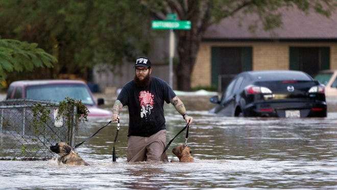 A man wades with two dogs through floodwaters in Austin, Texas, on Oct. 31, 2013, after heavy overnight rains.