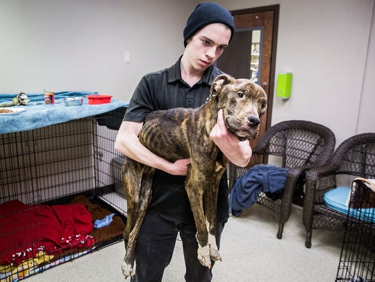 Muncie Animal Care and Services worker Perry Hughes