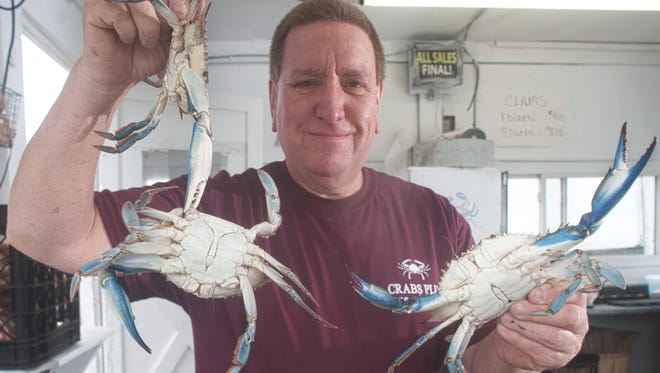 Store Owner, Mike Sylvester, shows some live crabs at Crabs Plus in Mt. Ephraim Avenue.