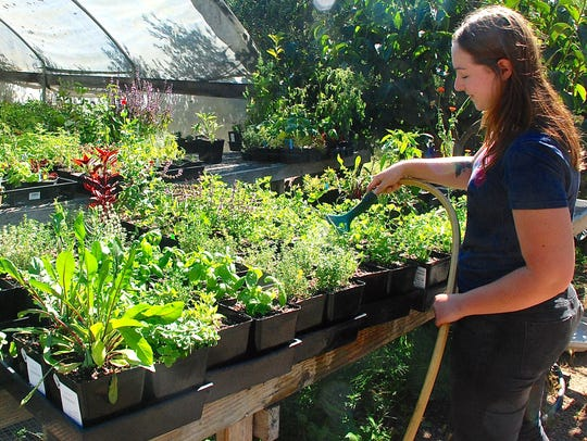 Emilie Rose Clarke waters young plants. All plants