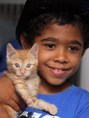 Christian Perez, 7, of Cedar Knolls holds a kitten