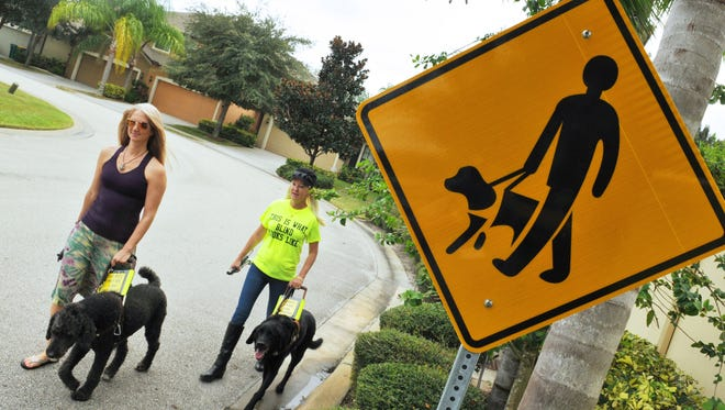 Jennifer Cleveland, who is legally blind, seen here walking with friend Lori Ciceroni, who is also legally blind, with their guide dogs Frank and Gayle.They are helping to bring awareness to the plight of the visually impaired by promoting the Oct. 15 White Cane Safety Day.
