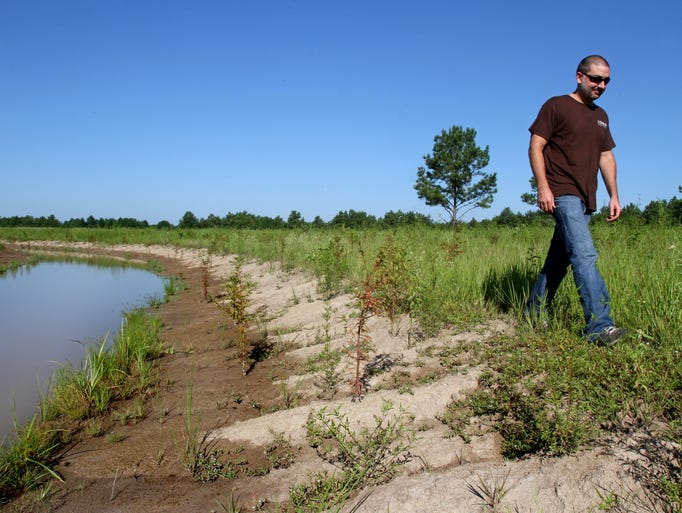 Chris Rice of The Nature Conservancy walks along the sloped banks of the Mollicy Bayou. This section of the stream was excavated by scientists and engineers with The Nature Conservancy and the U.S. Fish and Wildlife Service back to its natural path, complete with meandering curves and varying depths.