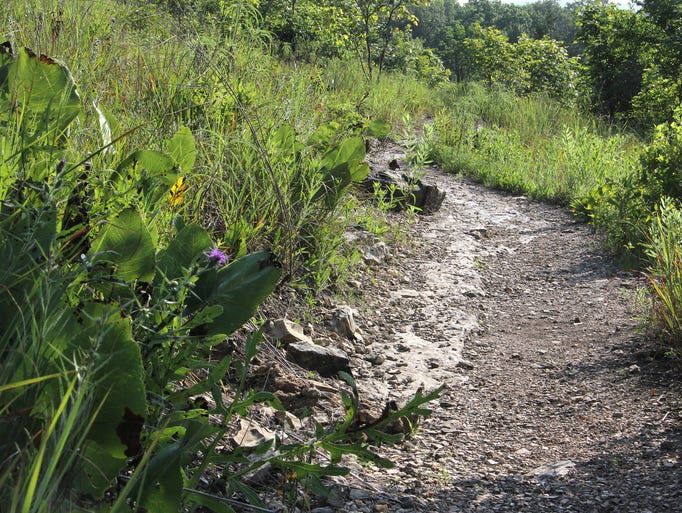 Henning Conservation Area offers more than five miles of scenic hiking trails on the northwest edge of Branson.