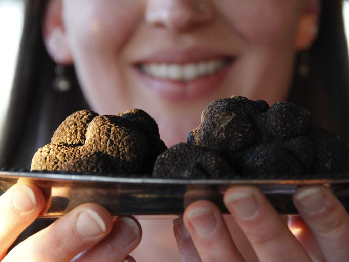 The American Truffle Company brought the Napa Truffle Festival back to California to celebrate the best chefs in truffle cuisine and truffle cultivation experts.