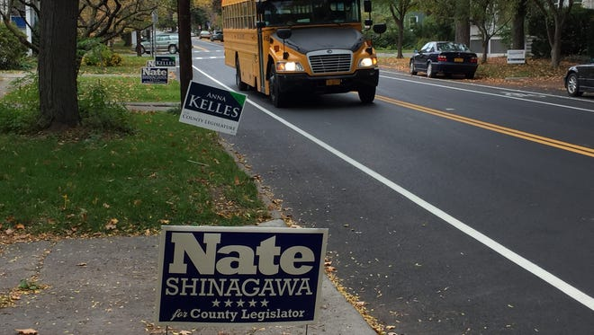 Anna Kelles and Nate Shinagawa are competing in a special election to fill the unexpired term of Kathy Luz Herrera, D-Ithaca, and represent the county's 2nd District. Election Day is Nov. 3.