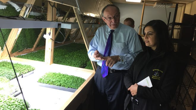 Brud Hodgkins, left, founder of Indoor Organic Gardens of Poughkeepsie, gives a tour of his growing operation to state Assemblywoman Nicole Malliotakis of New York City on Nov. 29, 2016.