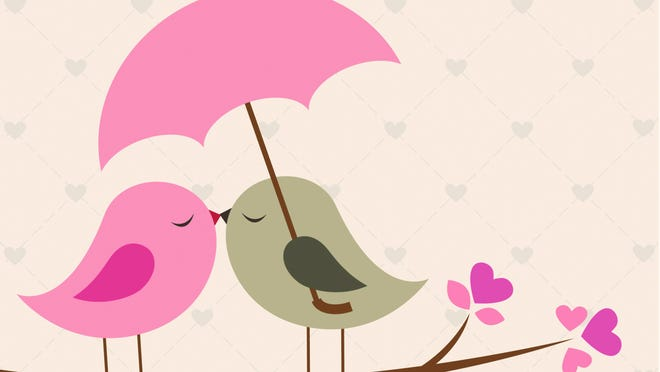 Love birds under umbrella