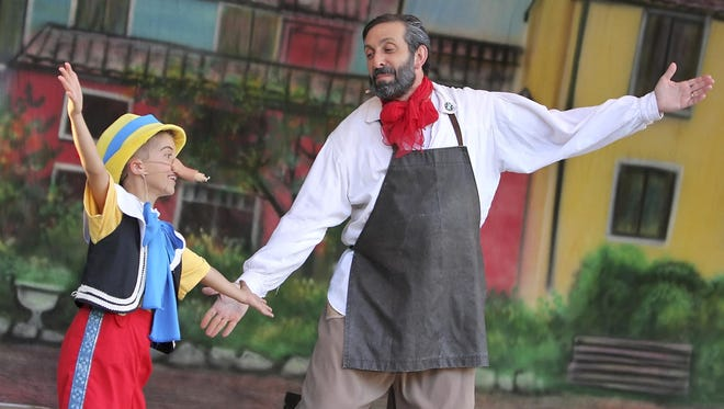 The Pensacola Opera is getting a new director.