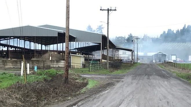 Volbeda Dairy and Willamette Valley Cheese Company on Nov. 29, 2017.