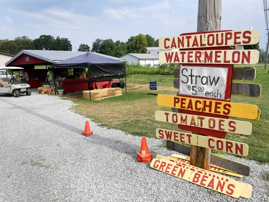 Advertising what's fresh out of the field, the Reinmann Farm vegetable stand along Darmstadt Road Wednesday, July 26, 2017.
