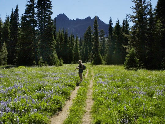 Best wildflower hikes in the Central Cascades. No. 2 - Canyon Creek Meadows.