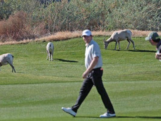 636177696390203971-Bighorn-PGA-West-16th-hole-Palmer-course-PGA-West-Humana-2014-by-Jay.jpg