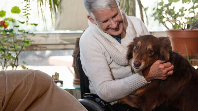 Susan Peters with Savannah,  her service dog, Monday, Dec. 29, 2014, at their home in Okemos, Mich. Savannah had been missing since Friday afternoon after apparently being frightened and running off when Peters' wheelchair tipped over in a crosswalk in Meridian Township.