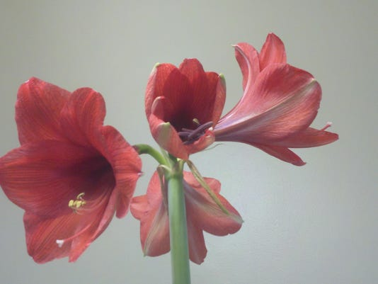2012-03-18_10-15-50_356