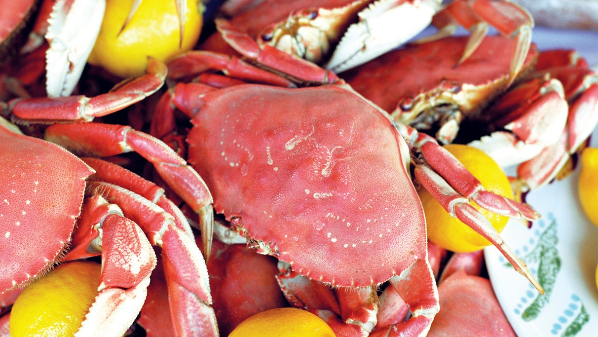 Dining - Dungeness Crab