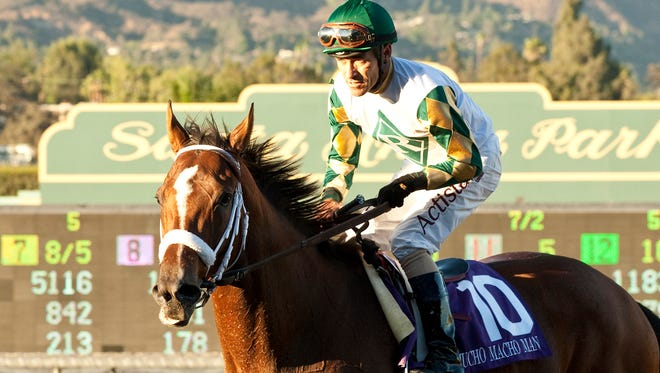 Jockey Gary Stevens guides Mucho Macho Man to the winner's circle after their victory in the Grade I, $250,000 Awesome Again Stakes
