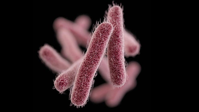 About 140 cases of Shigella sonnei have been reported in Eddy County, Lea County and Chaves County since May 2016. Shigella sonnei is caused by Shigella bacteria.