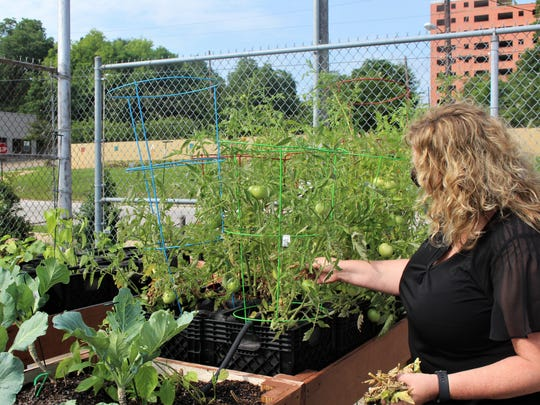 Sharon Everhardt, Troy University administrator and assistant professor, works in the downtown community garden that was planted through a partnership with Valiant Cross Academy.