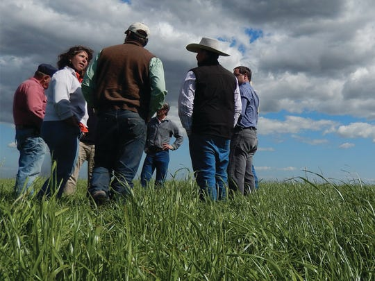Agricultural Professional Partnerships® On-farm training