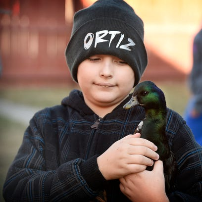 Coby Ortiz, an autistic boy, and the eight ducks the