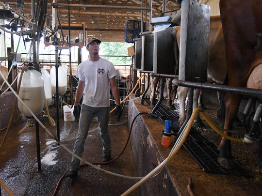 Adam Smith pumps milk from the Jersey Cows at Country Girls Creamery in Lumberton. The cows produce milk twice a day on the farm.