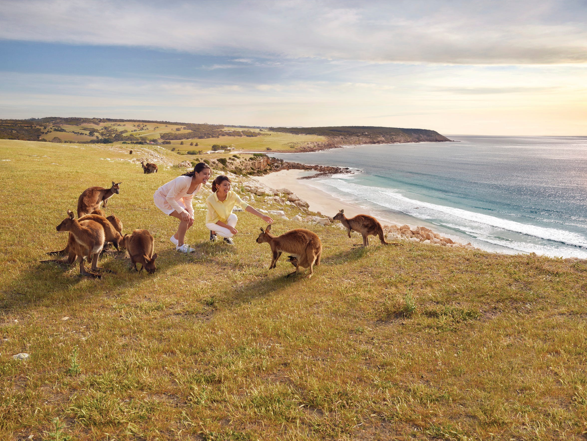 Spend an entire day exploring Kangaroo Island
