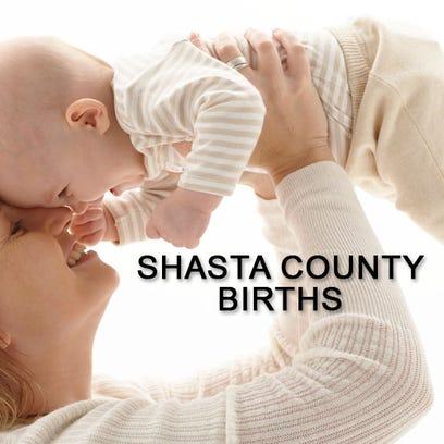 Shasta County births