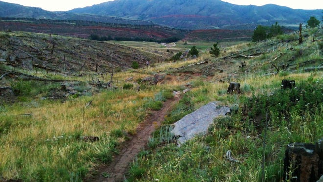 The Ginny Trail in the Bobcat Ridge Natural Area.