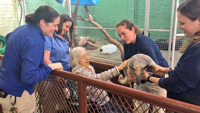 Zoo keepers introduce Works to all of the animals at the Columbian Park Zoo.