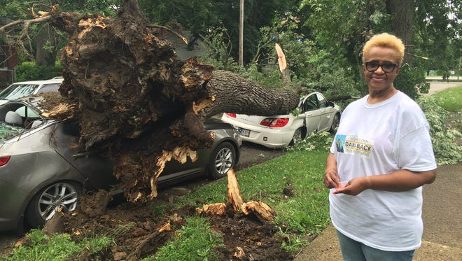 A storm-toppled tree destroyed Jan Vandever's two cars on Thursday.