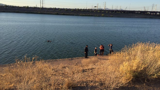 Tempe police and firefighters conducted a water rescue after a car was reported in Tempe Town Lake on July 15, 2016.