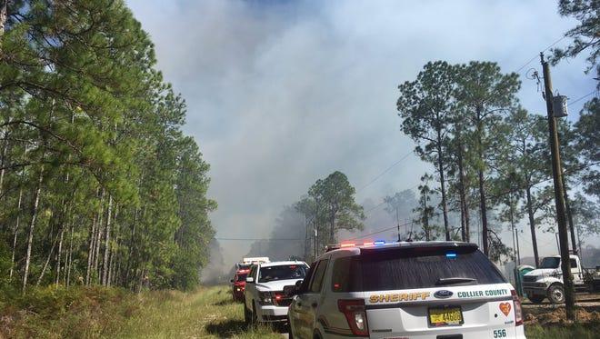 Brush fire near Everglades Boulevard on Oct. 22, 2016.