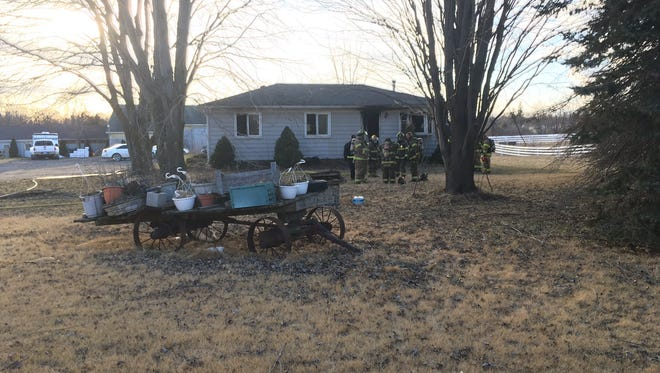 Two dogs died in a fire in Kimball Township this afternoon.