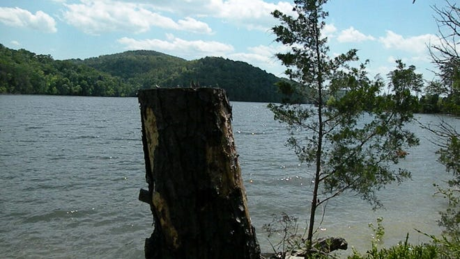 A view from Island F, the largest of 18 Islands in Norris Lake