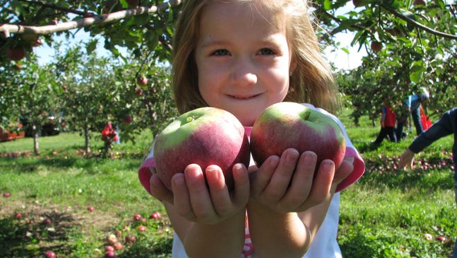 Fall is apple-picking time at Lautenbach's Orchard Country in Door County.
