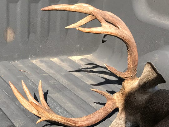 Finn Norsworthy's buck had 12 points with 22½-inch
