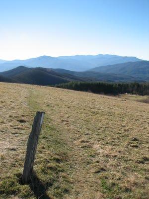 A trail marker on the Appalachian Trail.