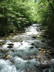 Big Creek in Great Smoky Mountains National Park is home to Midnight Hole and Mouse Creek Falls.