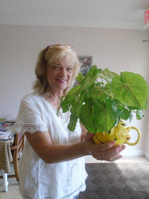 Resident Ellyne Strauss holds her potted plant.